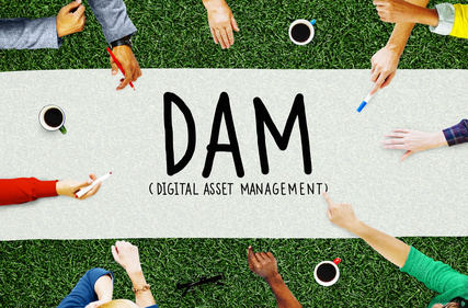 Discover Digital Asset Management
