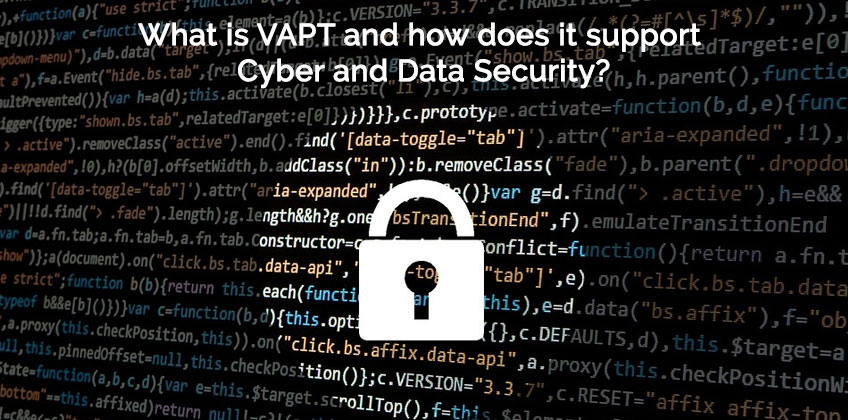 Understand Vulnerability Assessment and Penetration Testing (VAPT)